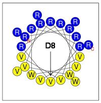 D8: a New Antimicrobial Peptide