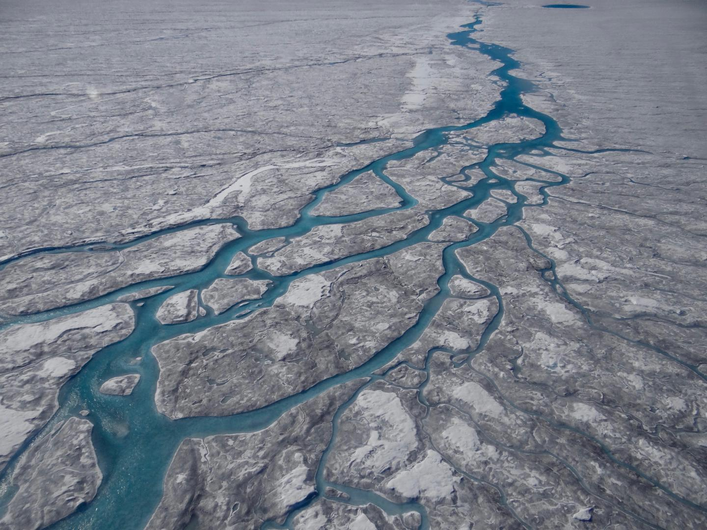 Darkening and Melting of the Greenland Ice Sheet