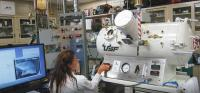 Hyperbaric Environmental Chamber Tests Impact of Ketogenic Supplementation on Seizures