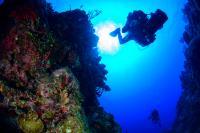 Grand Cayman Descent