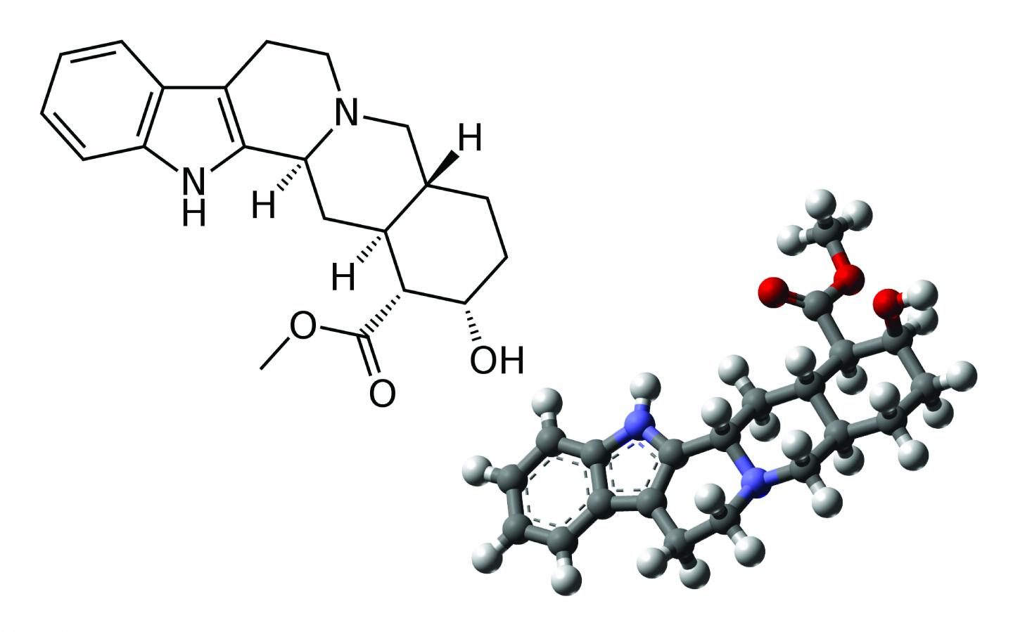 2-D and 3-D Structure of Yohimbine