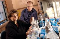 Georgia Tech Scientists Patricia Sobecky and Martial Taillefert