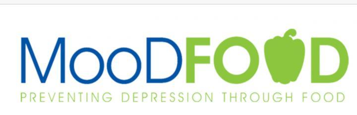 MooDFOOD Project Logo