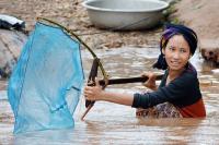 Mekong Fisher