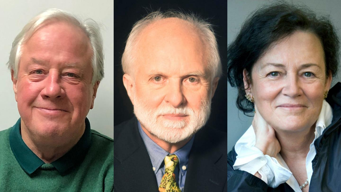 Robert Fettiplace, A. James Hudspeth, and Christine Petit