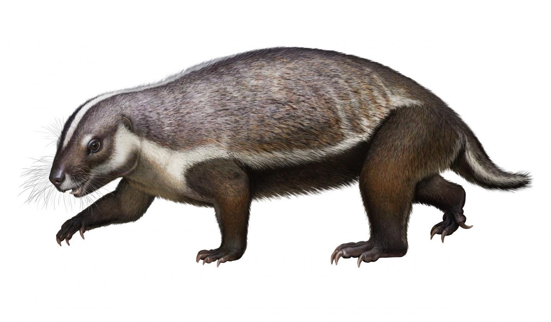 Lifelike Illustration of Adalatherium