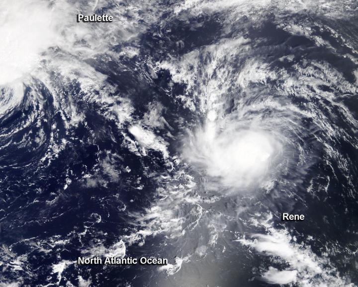 Terra image of Rene
