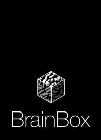 Animation of BrainBox's Workflow