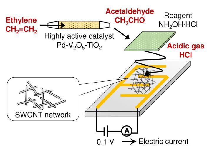 New Ethylene Sensor