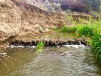 Beaver Dam in Eastern Oregon