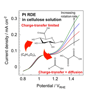 Pt RDE in cellulose solution
