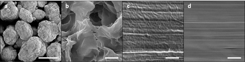 Changes in Polyethylene Surface Morphology