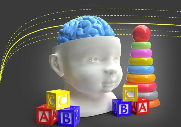 schiff brain growth