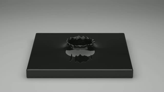 Ferrofluids in Action