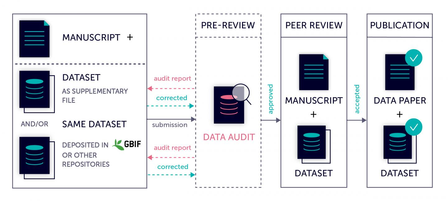 Data Audit Workflow Provided at Pensoft