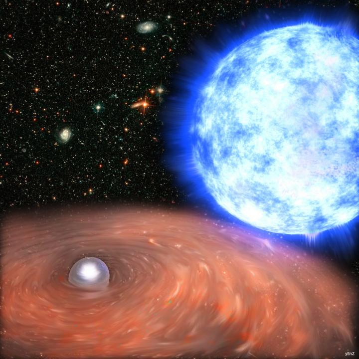 White Dwarf from HD49798/RX J0648.0-4418