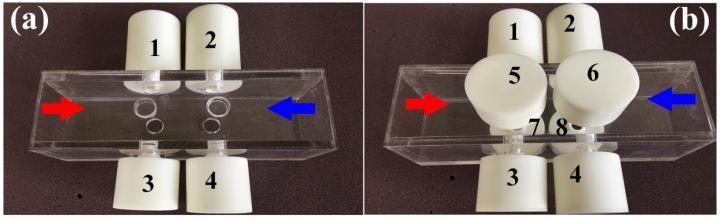 Multiband Asymmetric Absorptions