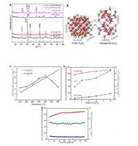 Structural Characterization and Catalytic Performance