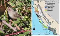 Towhee and Climate Map
