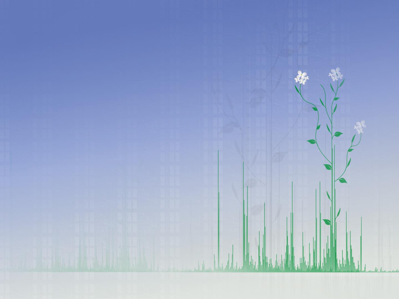 Arabidopsis-Atlas for the global scientific community