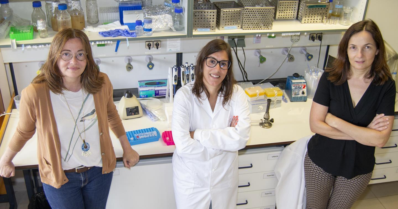 ITQB NOVA researchers