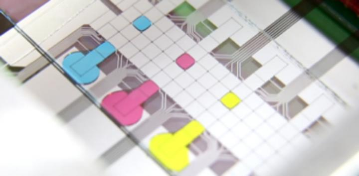 Microfluidic Chip with Droplets