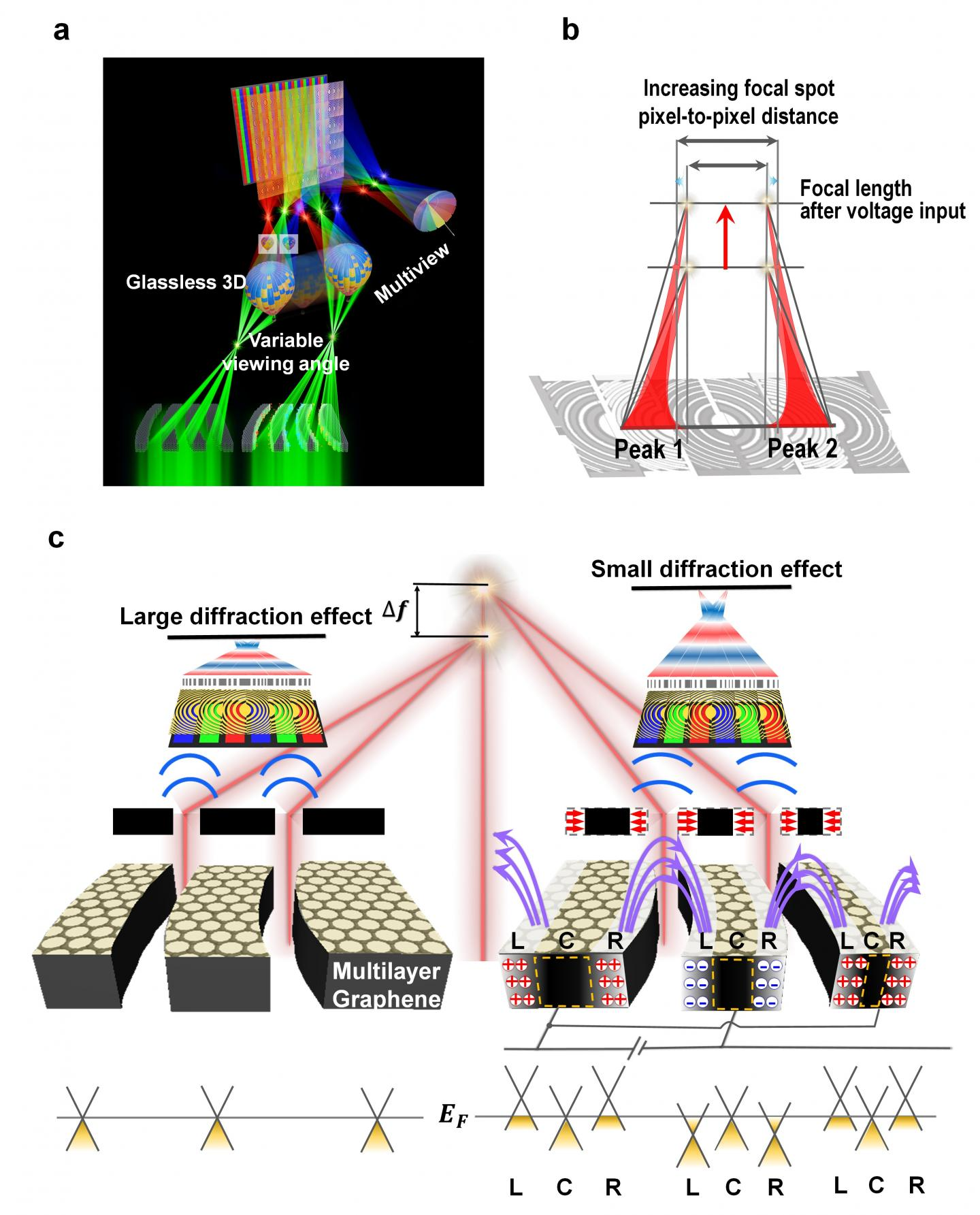 Mechanism of a Graphene-Based Tuneable Focal Length