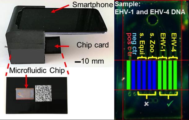 Smartphone POC Device