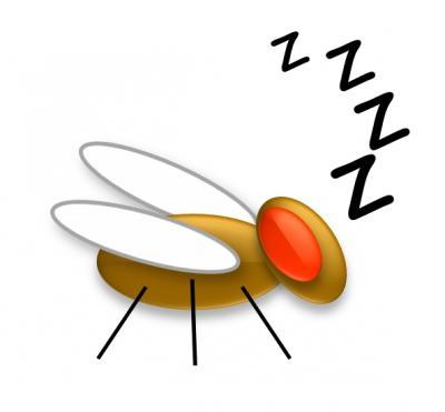 Sleeping Away Infection