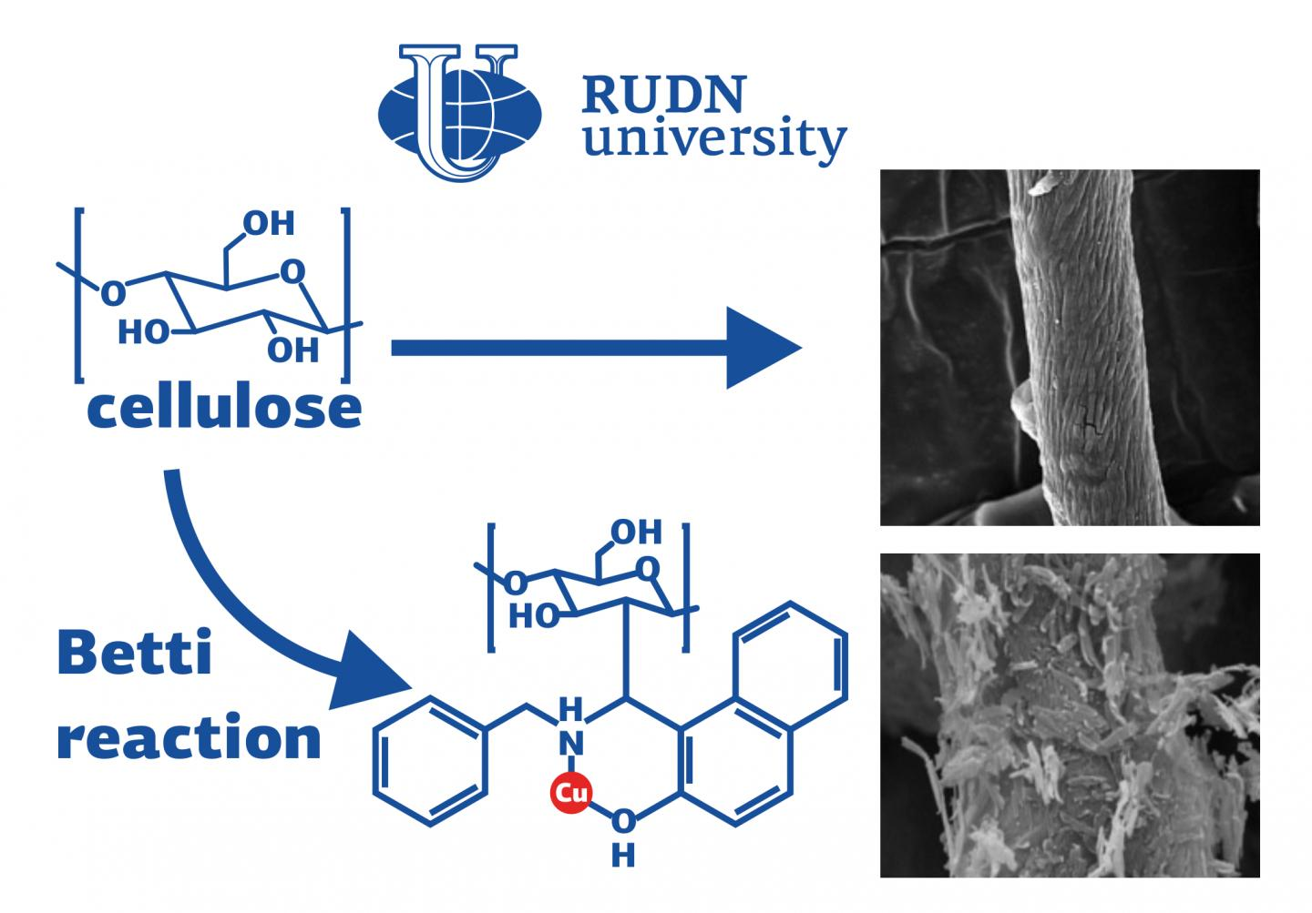 RUDN University chemist strengthens the catalyst for oxidiazoles synthesis by 3 times