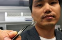 Flow Sensor on Stent Backbone