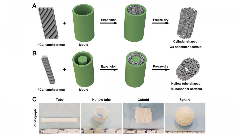 Schematic illustrating the procedure of converting a 2D nanofiber mat into a cylinder-shaped nanofiber scaffold