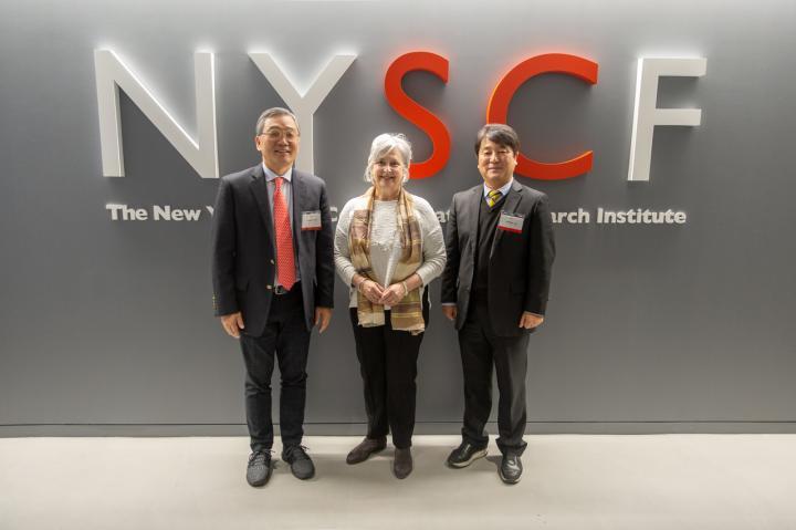 ToolGen/NYSCF/Ngene Meeting