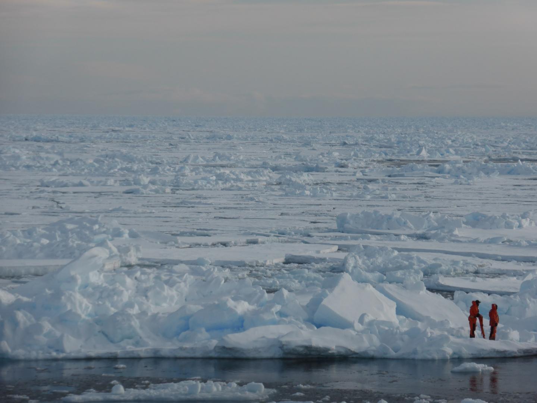 People Standing on Arctic Sea-Ice