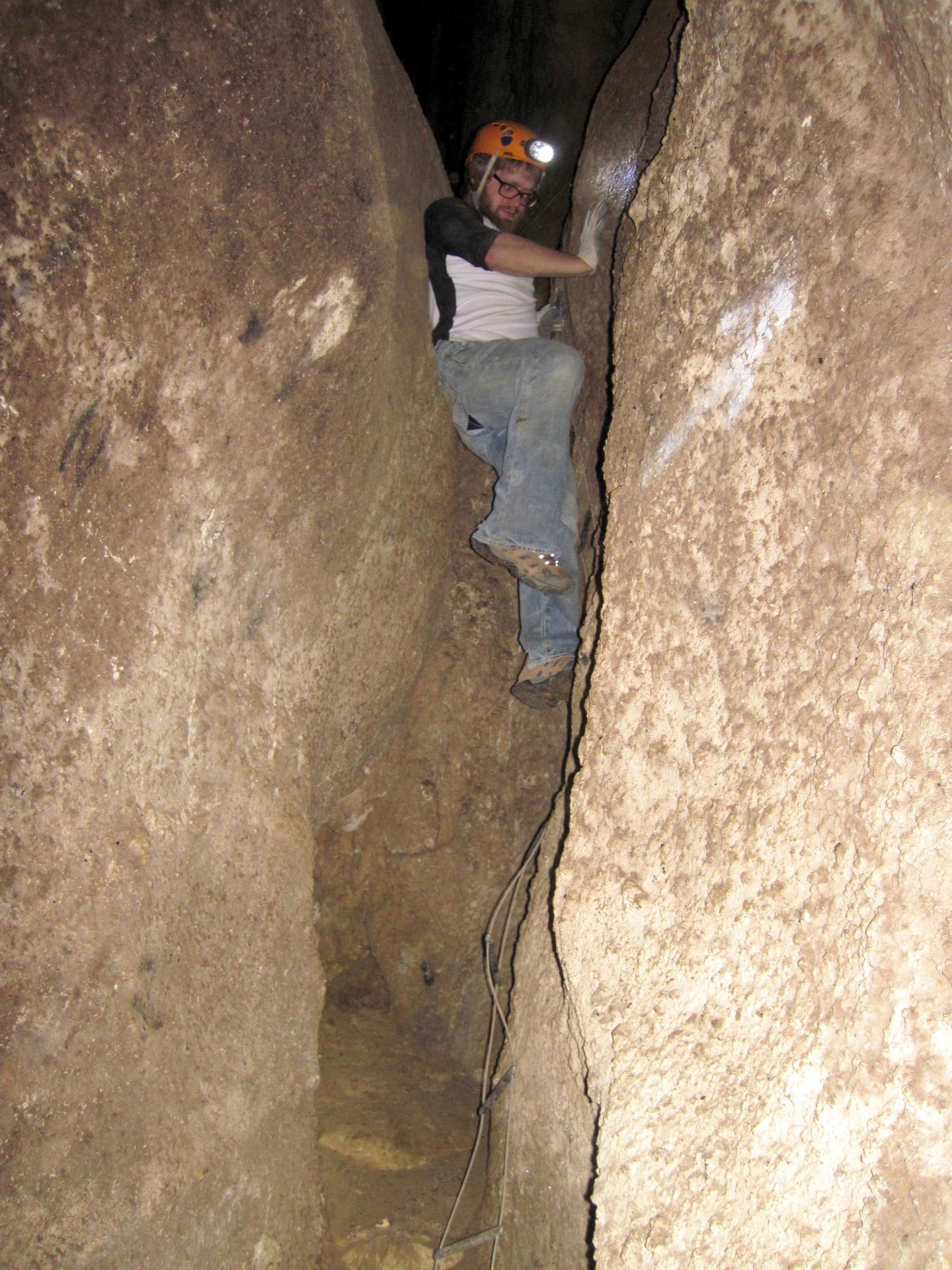 Bat Guano Researched in Romanian Cave