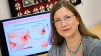Denise Mauzerall, Princeton University, Engineering School