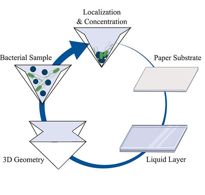 Schematic Detailing the Fabrication of Liquid-Infused Polymer Surfaces