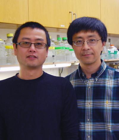 Peiqing Sun and Hui Zheng, Scripps Research Institute