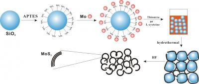 Schematic Illustration of the Preparation Process for Porous MoS2