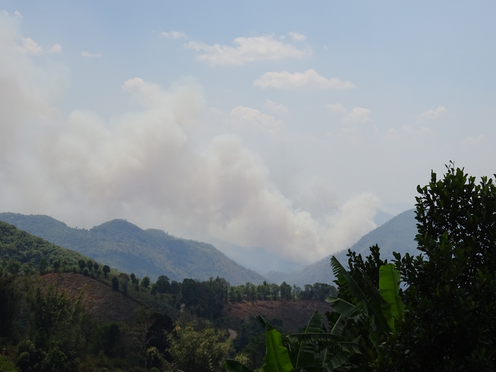 Emissions from agricultural and forest fires
