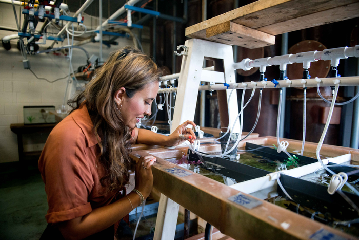 2.Alex Schnell in Cephalopod Mariculture Facility at Marine Biological Laboratory, Woods Hole.