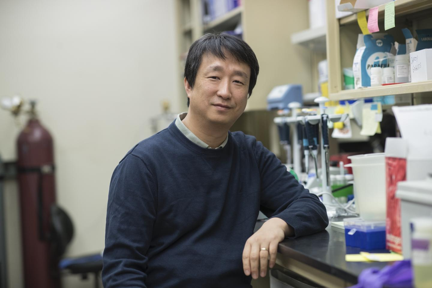 In the Inner Ear, UVA Finds An Essential Key to Hearing Sensitivity