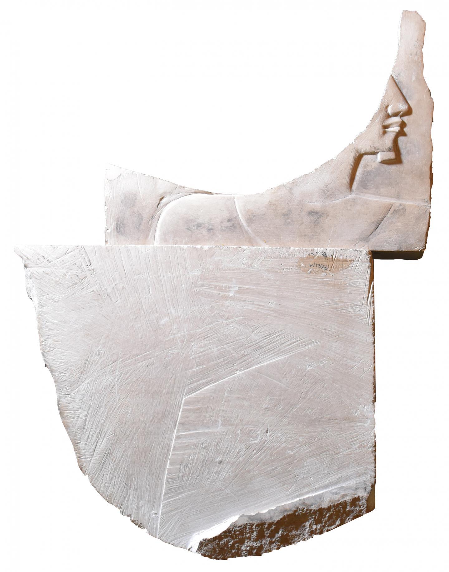 Head of Pharaoh Discovery (2 of 2)