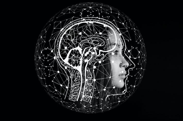 The DNA regions in our brain that contribute to make us human