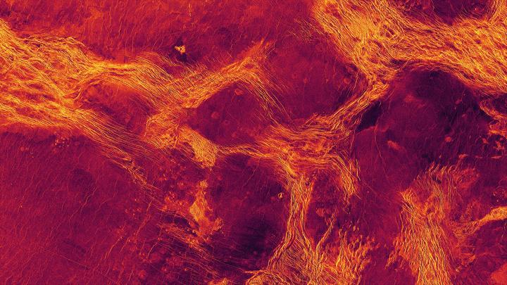 Lavinia Planitia