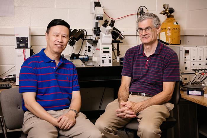 Ning Wang and Andrew Belmont, University of Illinois at Urbana-Champaign