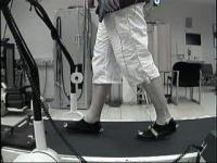 Treadmill (2 of 2)