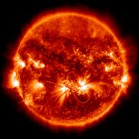 Active Region of the Solar Cycle
