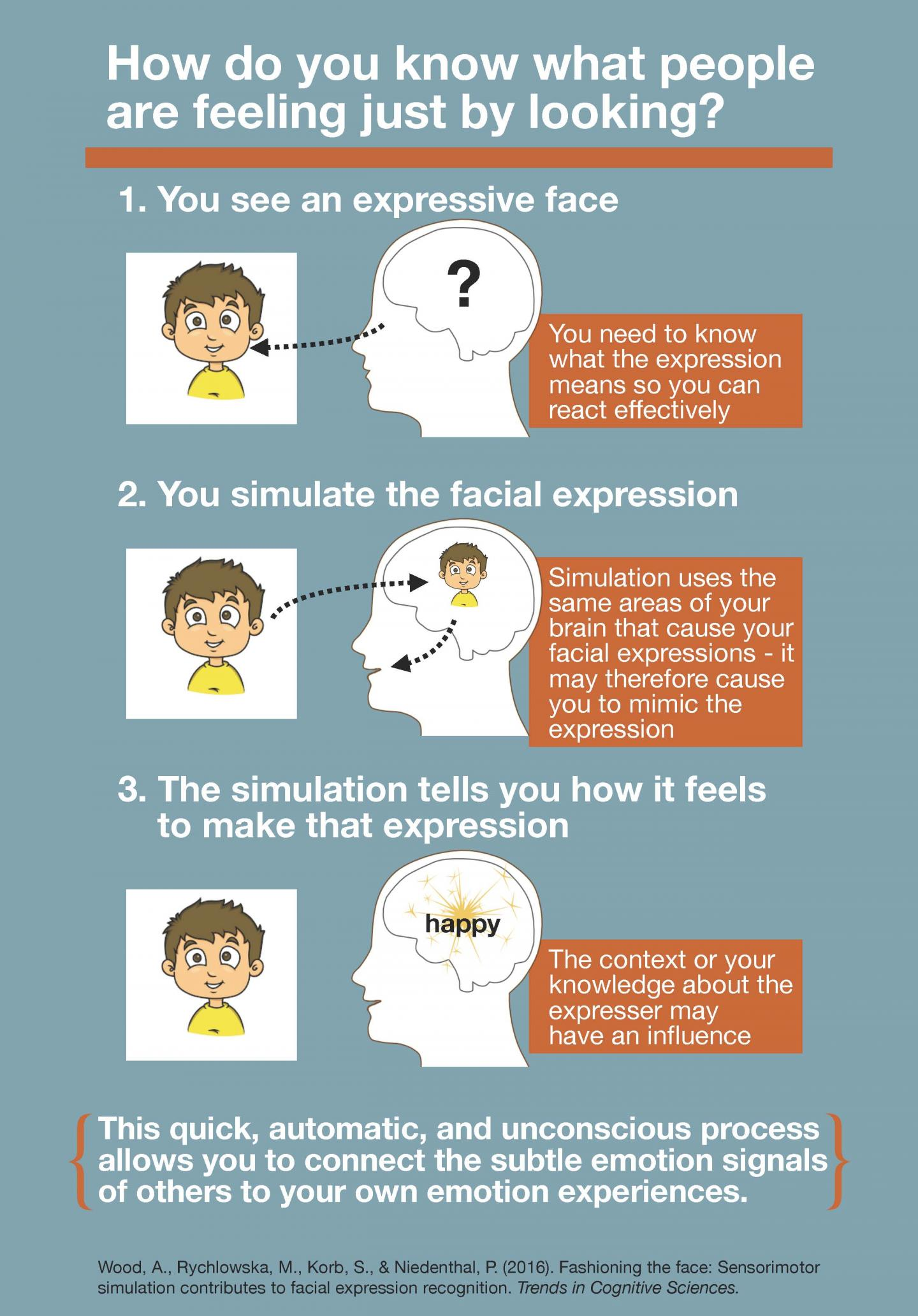 How Do You Know What People Are Feeling Just by Looking?