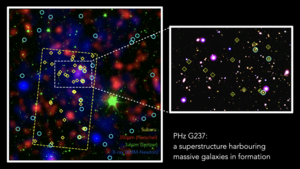 G237 protocluster